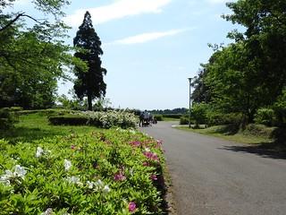 昭和の森 3 人々 01