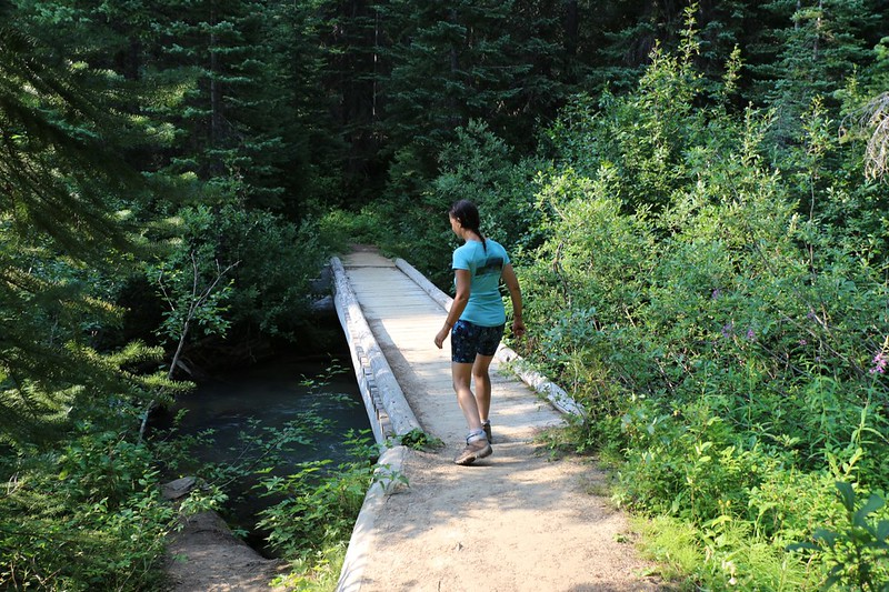 The wooden foot bridge over Miners Creek on the Pacific Crest Trail (PCT) where we filtered water