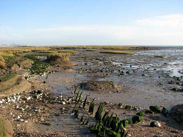 The east coast of Canvey Island