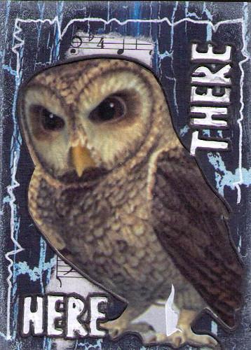 Hoot Owl 6of8