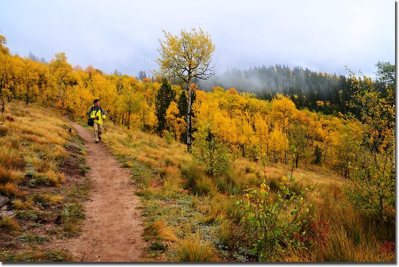 Colorado Trail (7)