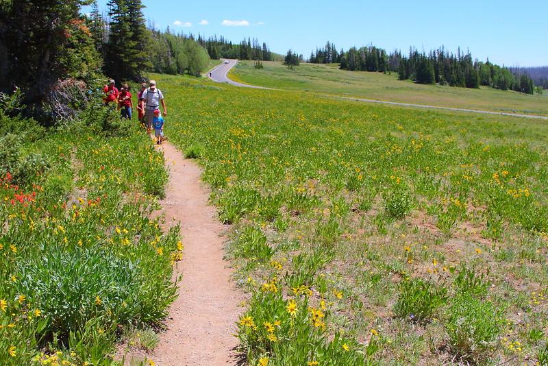 IMG_5248 Alpine Pond Trail