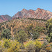 Flinders Ranges and windmill