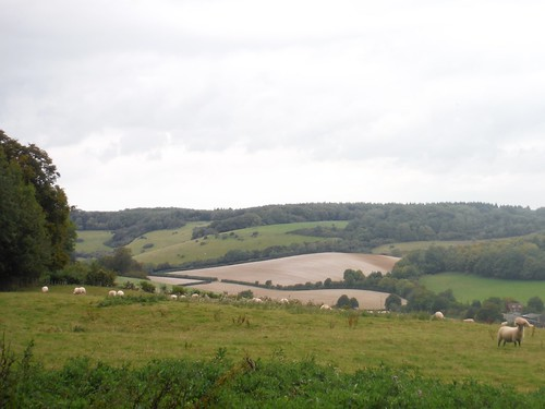 Crundale from Crundale Down