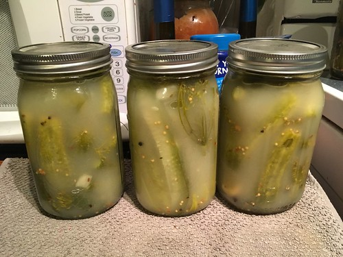 Lacto-fermented pickles done on Day 6.