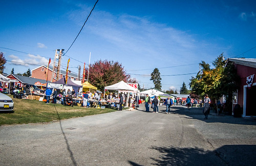 Skagit County Yard Sale-002