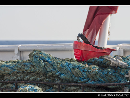 I lavoratori del mare / The workers of the sea