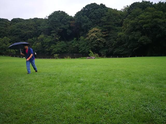 Meiji Jingu reservation