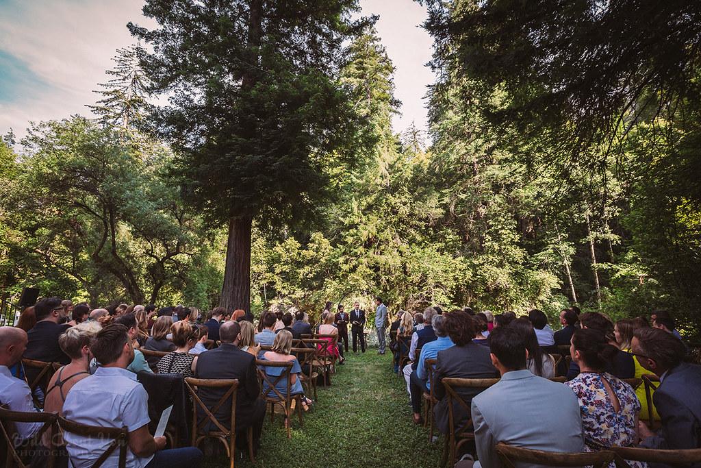 redwoodwedding048