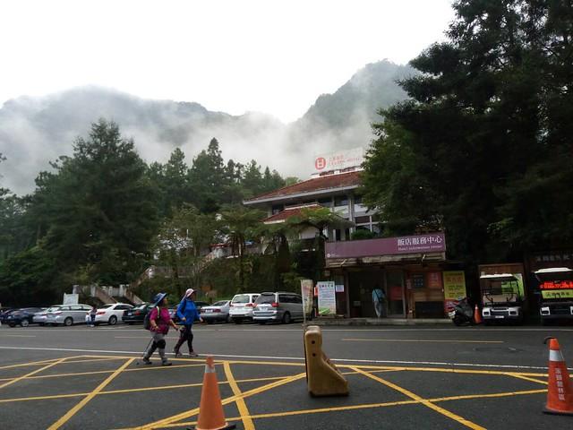 溪頭的山嵐 (14)