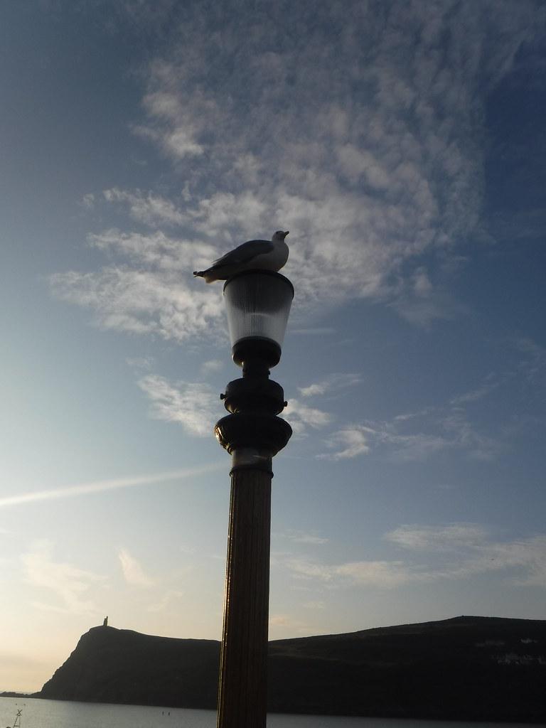 Port Erin 28