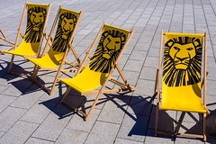 Reserved for lions