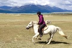Pferdetrekking, reiten in der Mongolei. Foto: Christine Theodorovics.