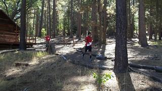 21 - runners