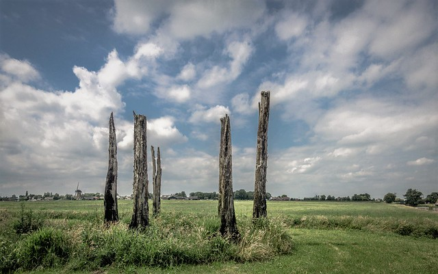 Relicts of Holland's prehistoric past