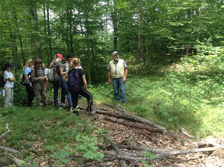 Tom Worthley leads Natural Resources Conservation Academy participants in the UConn Forest.