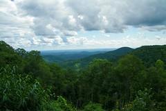 Trails Cabin Overlook