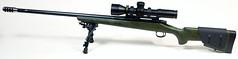 Remington 700 Long Range Tactical .308
