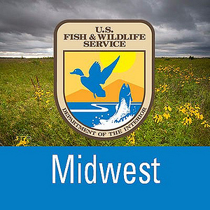 U s fish and wildlife service midwest region 39 s for Us fish and wildlife