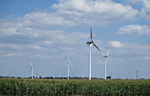 Abgebrannte Windmühle