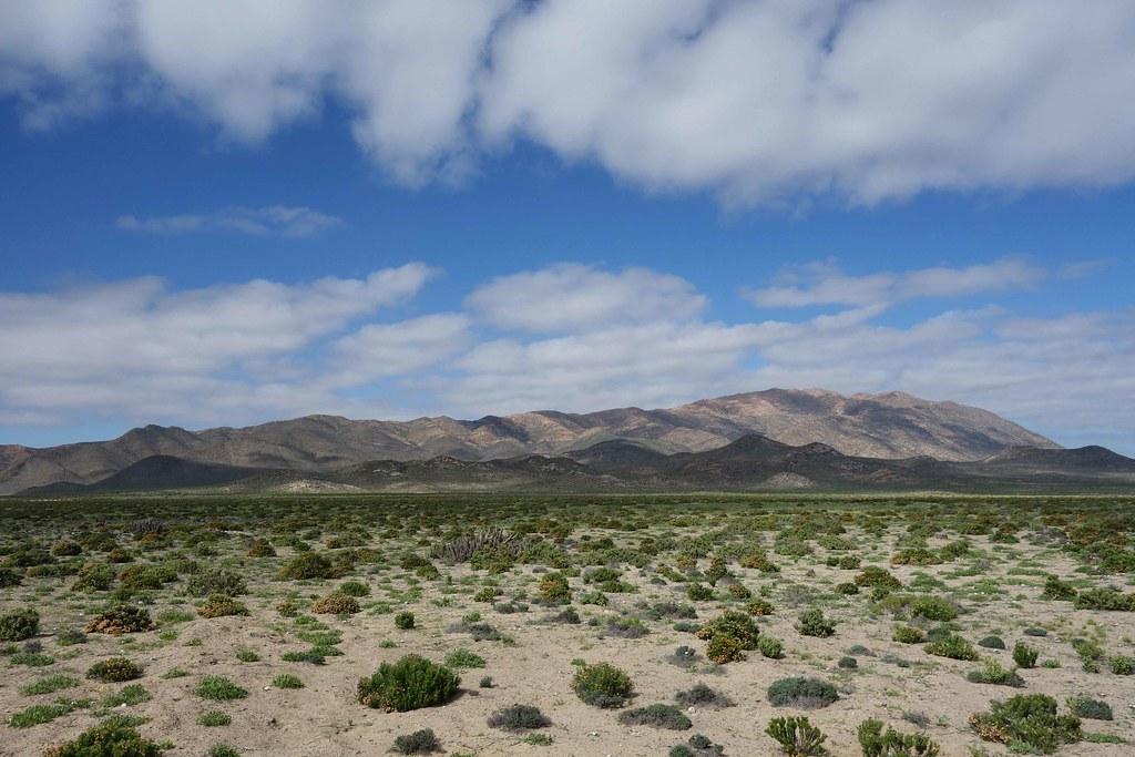 Region III - Llanos de Challe