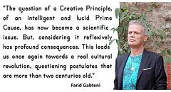 Farid Gabteni_quote 079