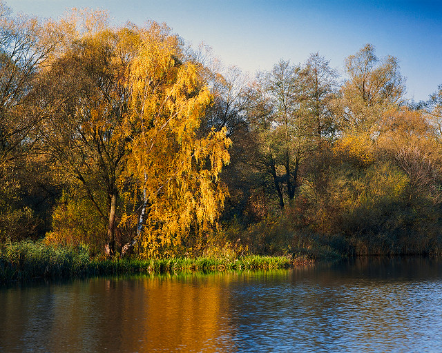 Autumn climate