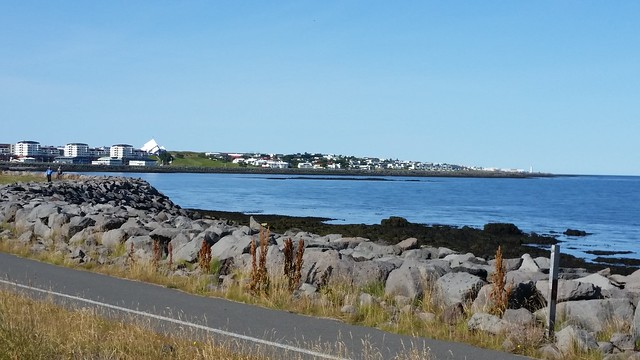 Reykjavik Harbor View