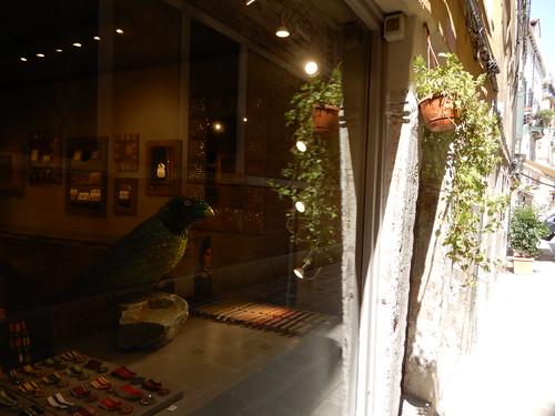 bird in a shop