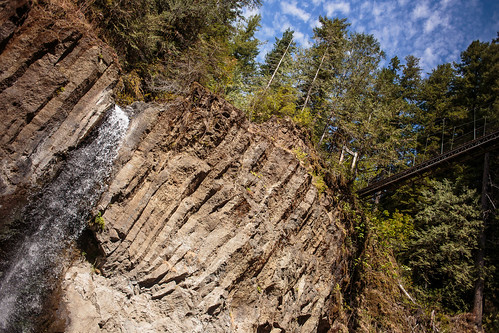 Drift Creek Falls-9919