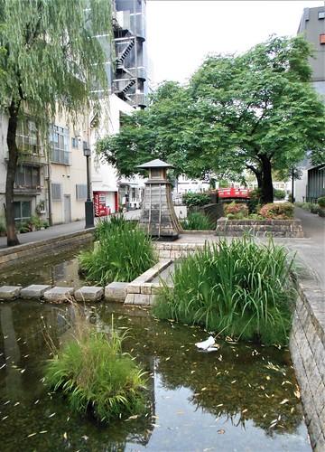 jp-kochi-centre-ville (5)