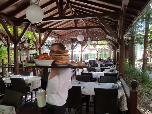 Étteremlabirintus a bokorban