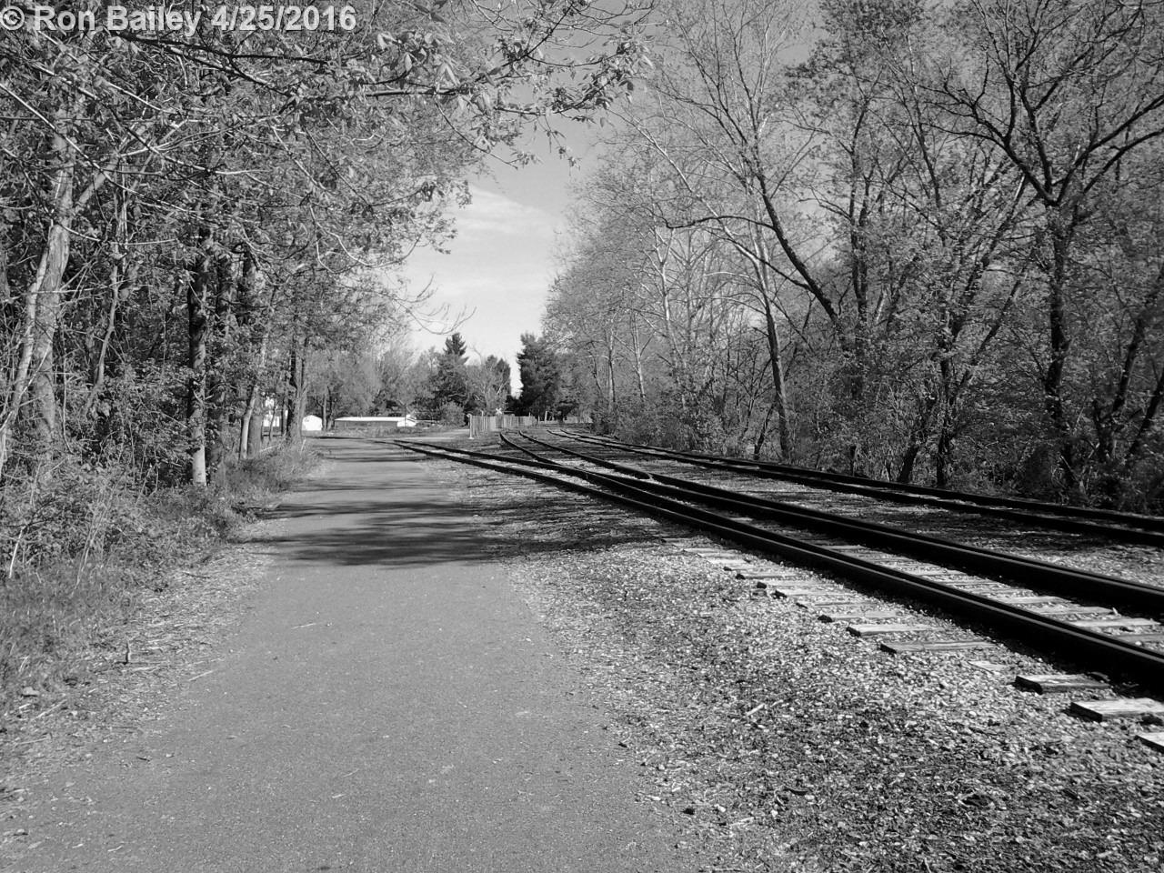 Bikepath Walk 4-24-16 50 BW