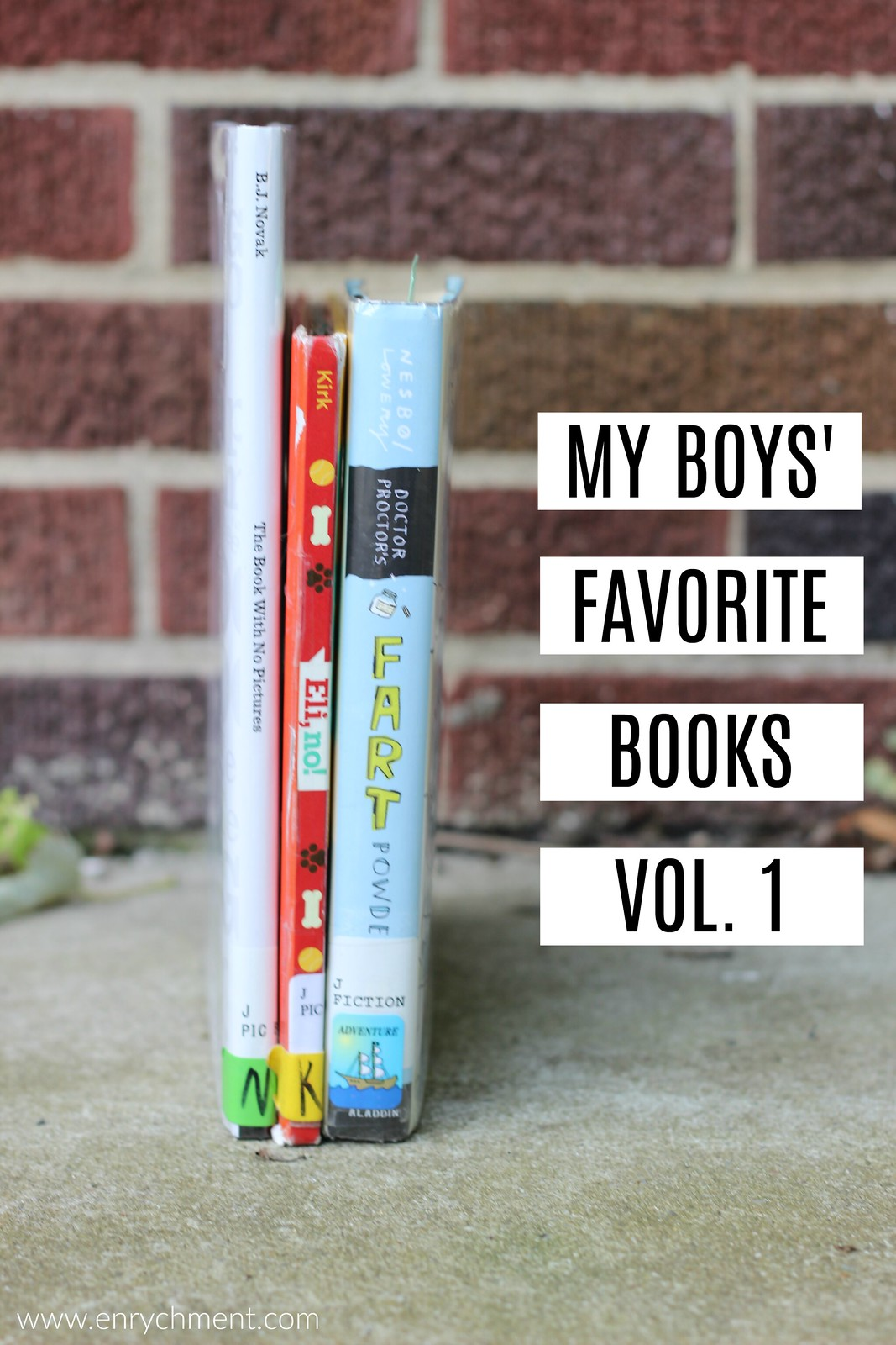 My boys' favorite books