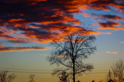 skyline redsky orangesky orangecolor red cloudy clouds tree afternoon evansga georgia city cityscape quietevening evening can canon700d canon colorstone shadows silhouettephotography silhouette