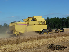New Holland Tx68 plus-084