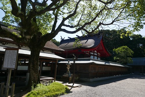 munakatataisha044