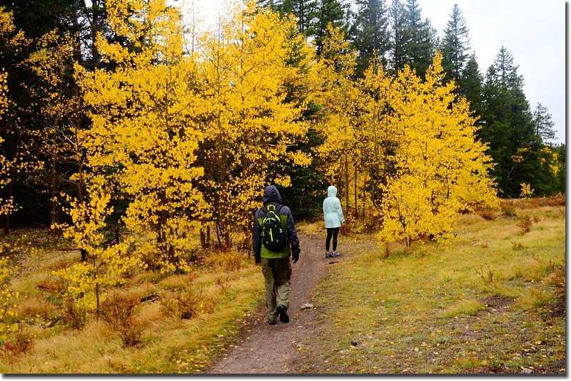 Colorado Trail (10)