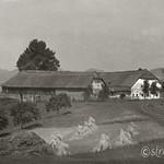 1943 Widderhofer vor Flugzeugabsturz sw