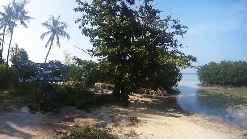 Konservasi laut Pulau Tidung, Kepulauan Seribu, Jakarta.