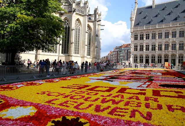 Het bloementapijt op de Grote Markt in Leuven