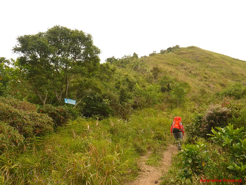 Mt. Napulak shoulder