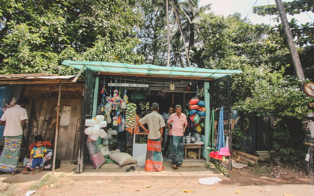 23.06-Sinharaja-Sri-Lanka-canon-1500px-009