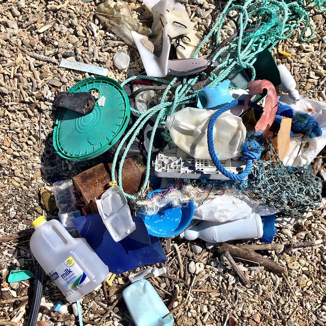 About a quarter of the rubbish we picked up on Double Cone Island.
