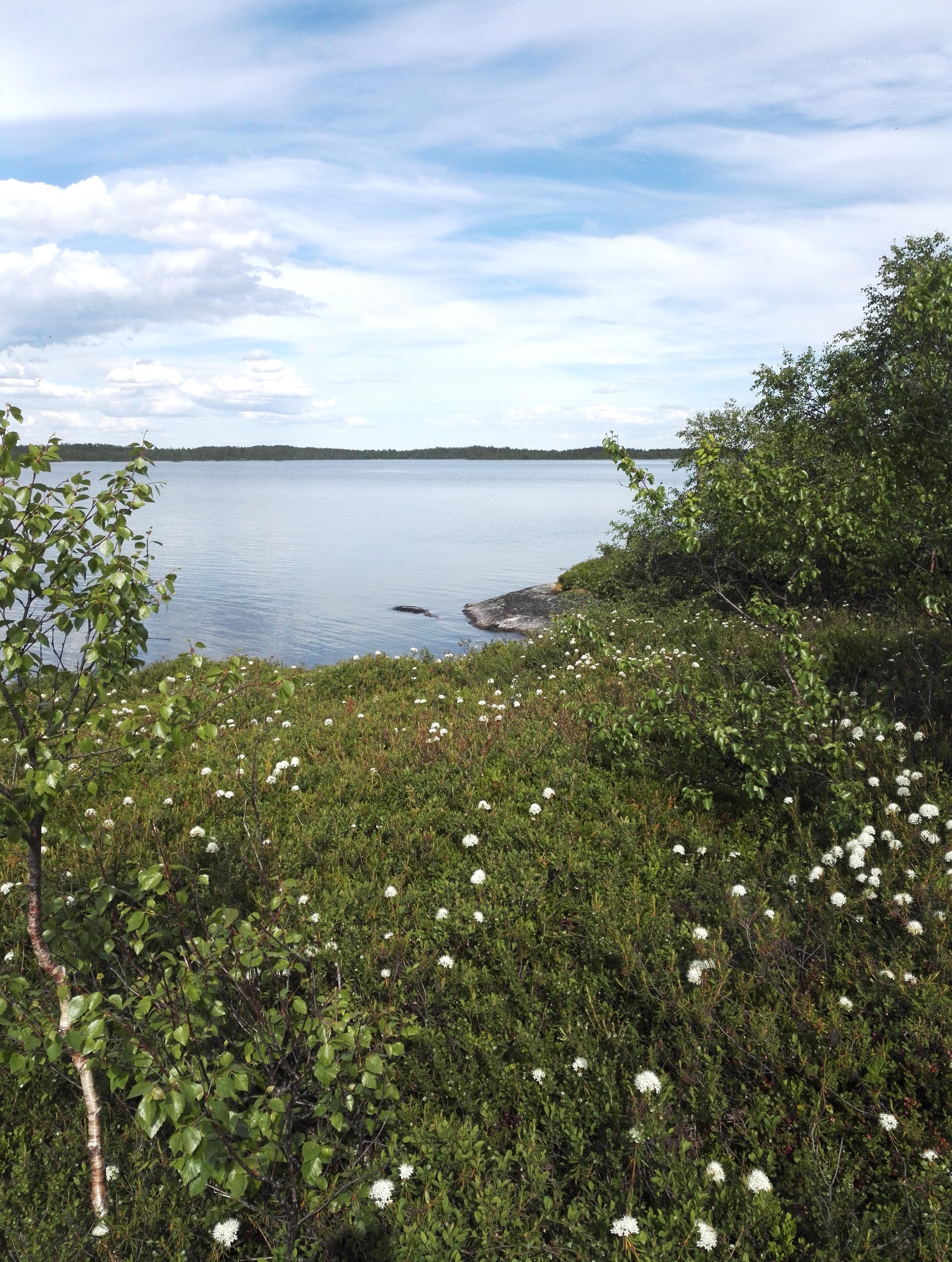 inari saari
