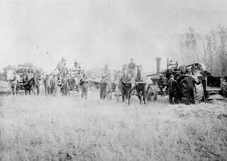 Theodor Möeller's steam engine threshing outfit. First steam traction engine in Strasbourg, Saskatchewan / La batteuse à moteur à vapeur de Theodor Möeller. Première locomotive routière à vapeur à Strasbourg (Saskatchewan)