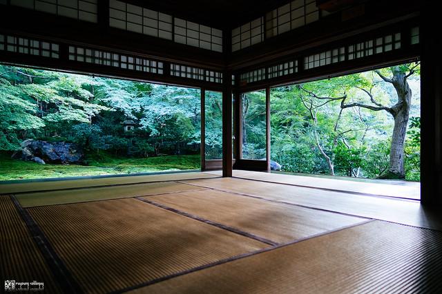 十年,京都四季 | 卷五 | 京都與我,有時還有關西 | 08