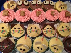 Cupcake Day for the RSPCA