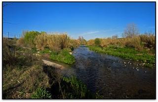 Aiguabarreig del Tenes i el Besòs, Mollet del Vallès / Montmeló (el Vallès Oriental)