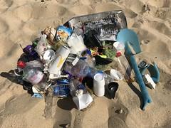 Horsey Beach Clean - Finds